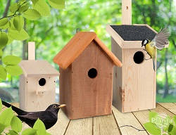 Budka lęgowa to miejsce imitujące dziuplę. Chroni ona ptaki i ich potomstwo przed deszczem, wiatrem, chłodem i drapieżnikami