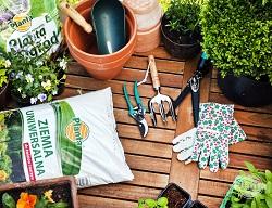 Ziemia uniwersalna może być wykorzystywana zarówno w domu jak i w ogrodzie.