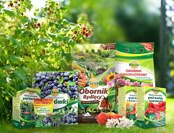 Nawożąc krzewy owocowe wybierzmy specjalistyczne nawozy.
