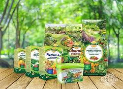Aby zapewnić odpowiednią ilość makro i mikroelementów możemy zastosować nawozy organiczne lub mineralne