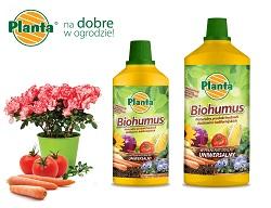Biohumus dostępny jest w formie płynnej. Jest to wodny roztwór kompostu dżdżownicowego.