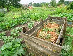 Kompostownik w ogrodzie pozwala zagospodarować odpadki organiczne z domu i z ogrodu