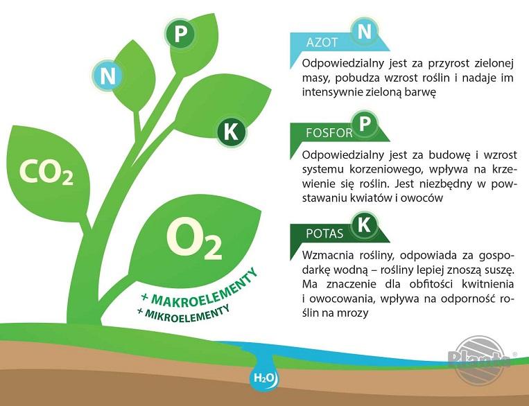 NPK to podstawowe pierwiastki Azot. Fosfor i Potas, które są podstawowymi składnikami budulcowymi roślin.