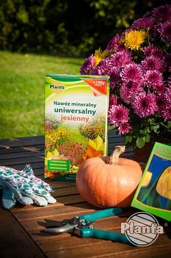 Nawóz jesienny uniwersalny warto zastosować do krzewów i drzew ozdobnych oraz roślin kwitnących zawiązujących pąki jesienią.