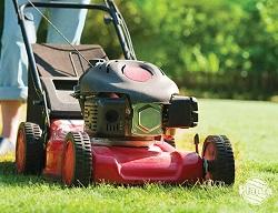 Kupując kosiarkę weźmy pod uwagę wielkość naszego trawnika.