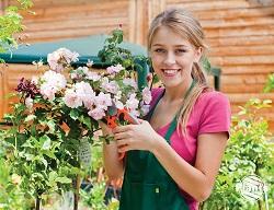 Cięcie róż wymaga sporych umiejętności i doświadczenia, a olbrzymia liczba gatunków i odmian wymaga indywidualnego ich traktowania.