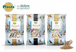 W sklepach ogrodniczych dostępny jest specjalny pokarm zimowy dla ptaków.